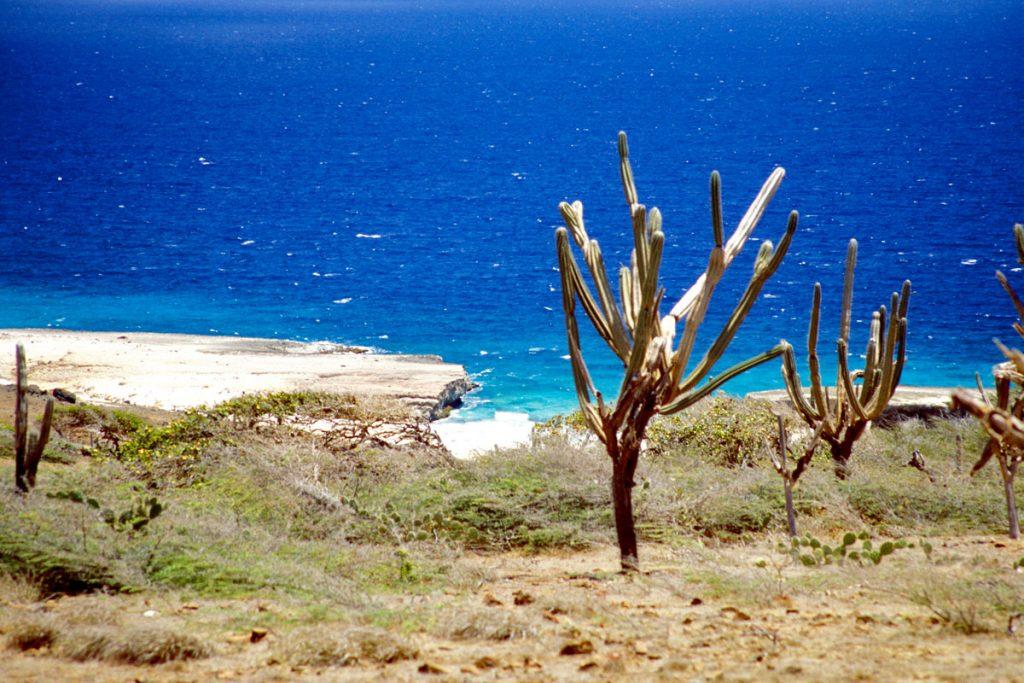 Arikok Nationalpark auf Aruba