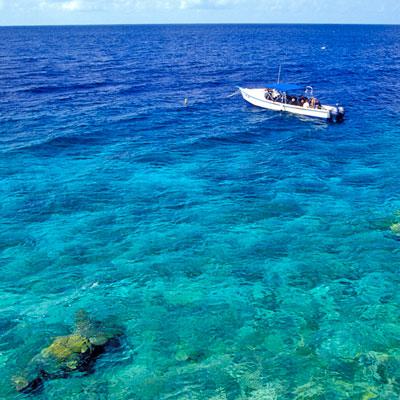 Taucher im Marine Park, Bonaire