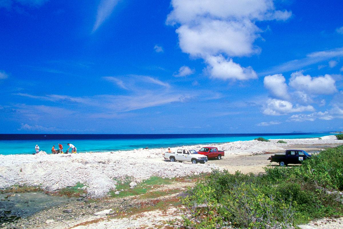 Taucher am Pink Beach, Bonaire