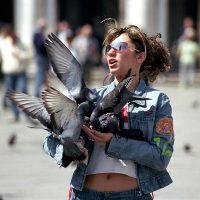 Tauben auf dem Markusplatz in Venedig