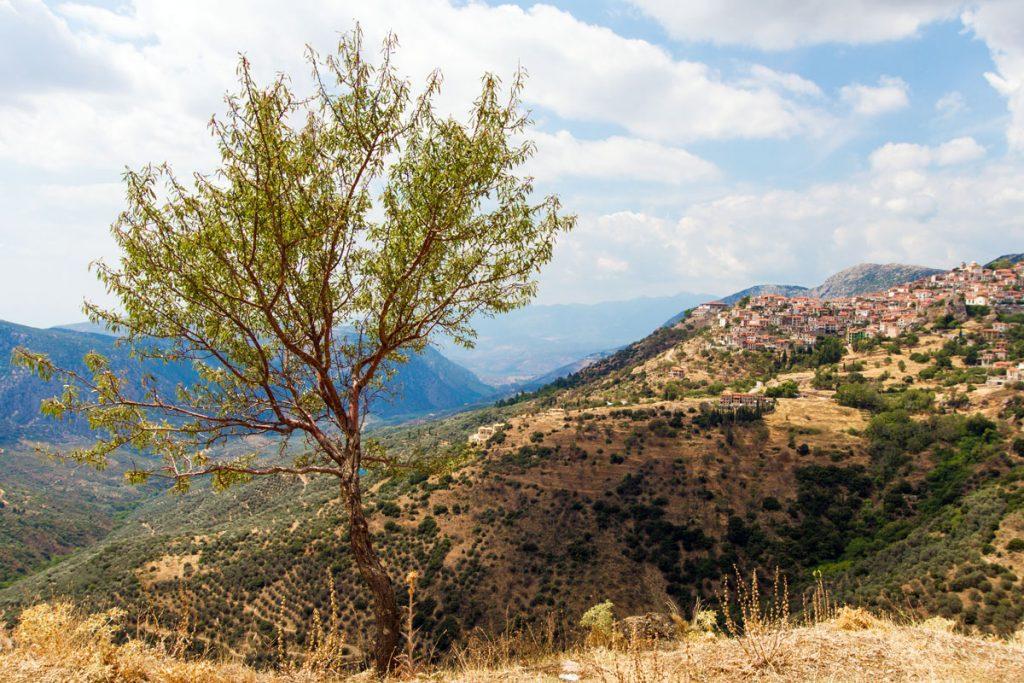 Unterwegs nach Delphi, Griechenland