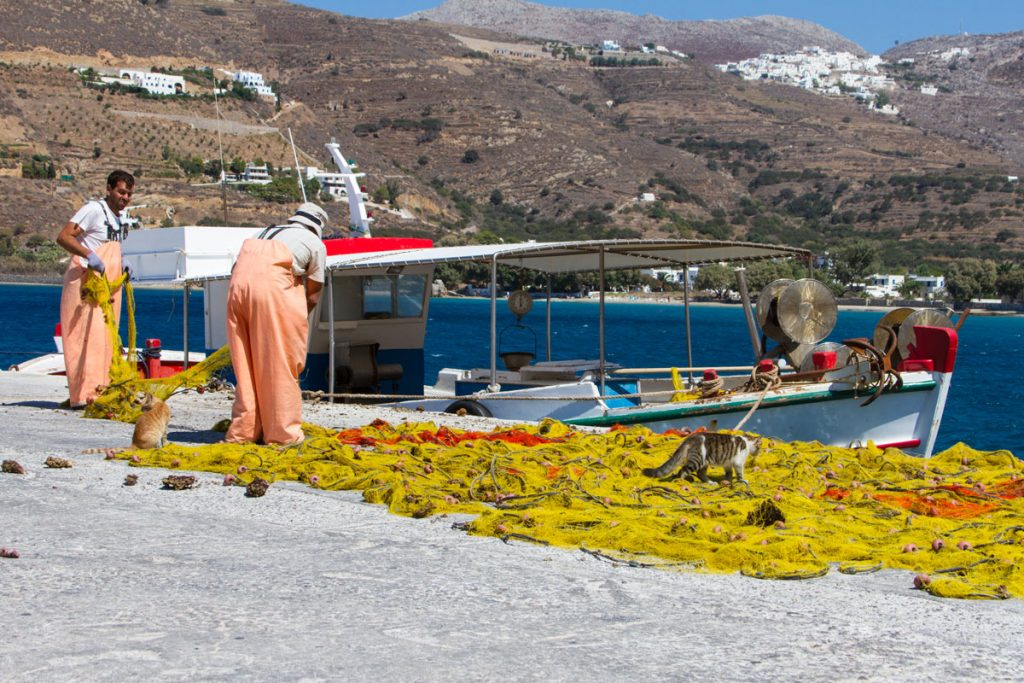 Fischer im Hafen von Aegiali, Amorgos