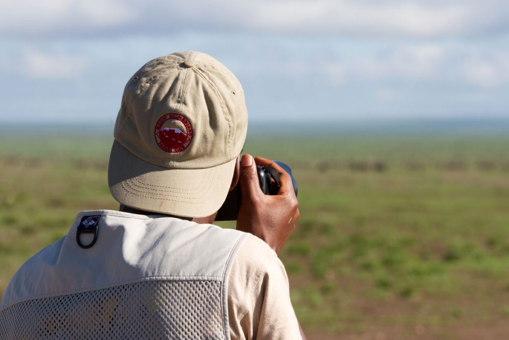 Riesige Gnuherden im Serengeti-Nationalpark, Tansania