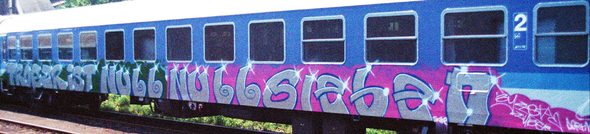 Graffiti am Zug in Dresden