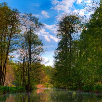 Fließ bei Raddusch im Spreewald