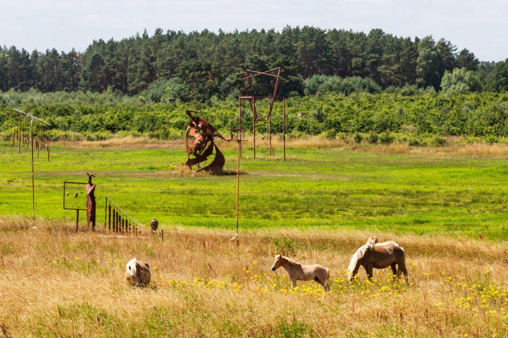 Pferde im Skulpturenpark Katzow