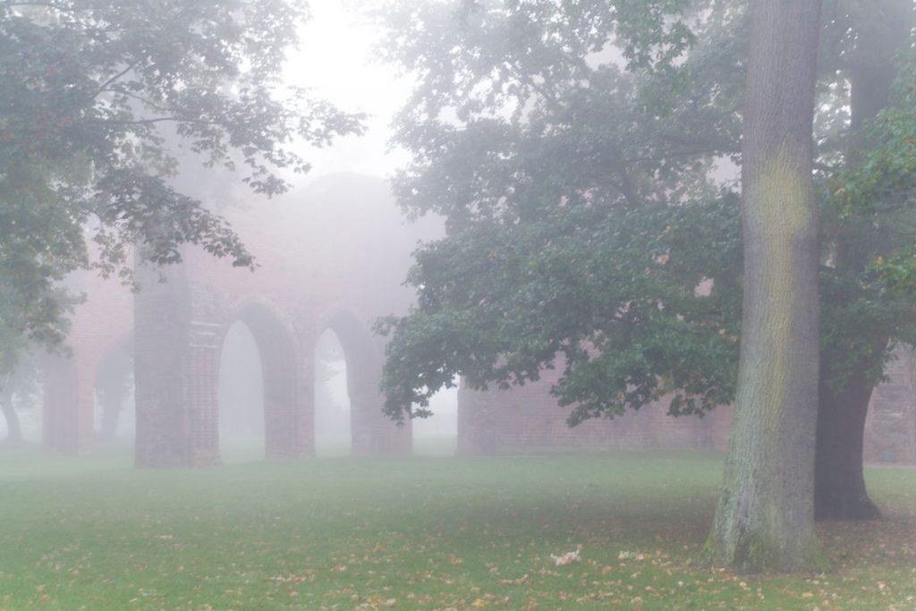 Klosterruine Eldena im morgendlichen Nebel