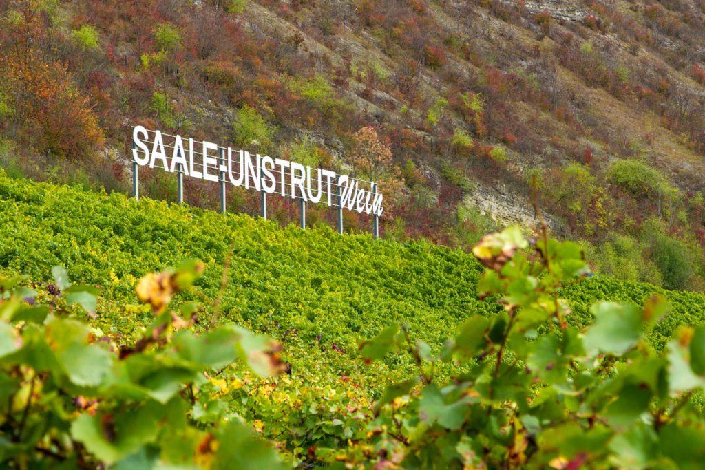 Das Symbol einer ganzen Weinregion: Der berühmte Saale-Unstrut-Wein