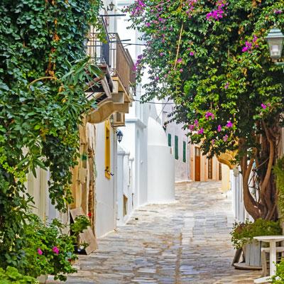 Typisch griechische schmale Gasse mit Pflanzen in der Hauptstadt der Kykladeninsel Tinos