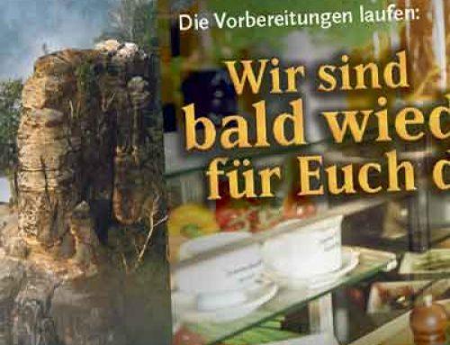 Anzeigendesign Firmenverbund in Sachsen