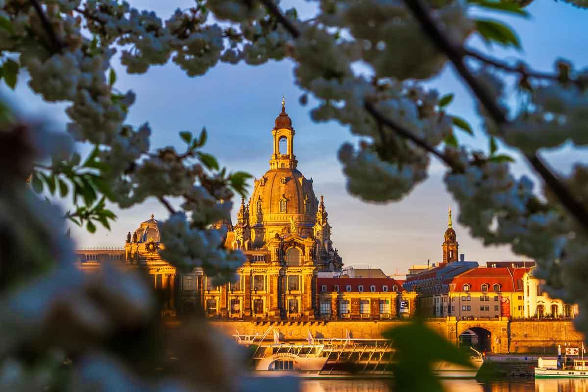 Mentoring Dresden